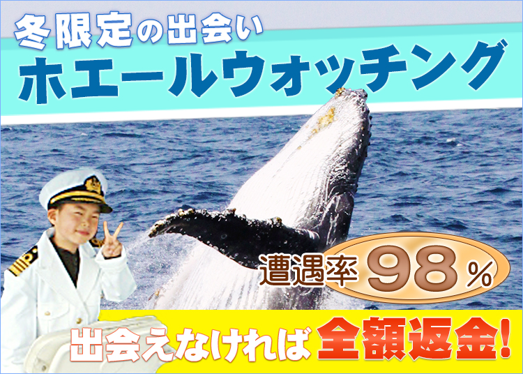 沖縄で迫力のホエールウォッチング!2015~2016受付中