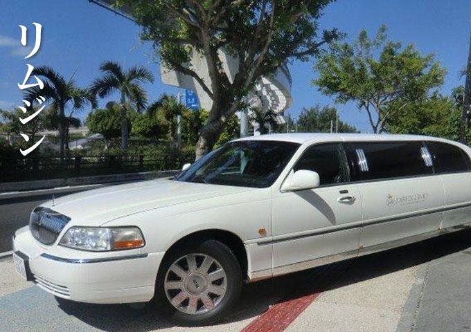 "Main image of plan ""limousine"""