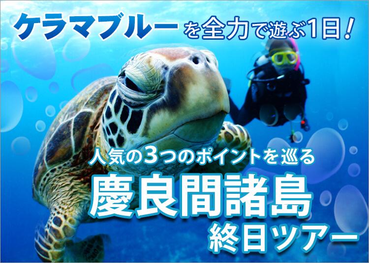 人気の3つのポイントを巡る慶良間諸島終日ツアー