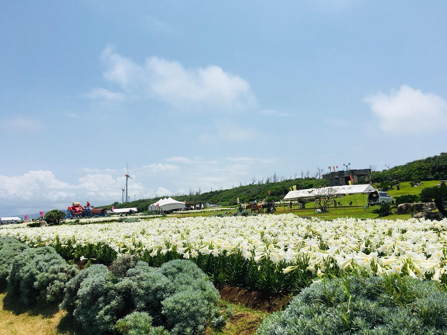 2019年 伊江島ゆり祭り_190506_0048