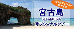 宮古島オプショナルツアー