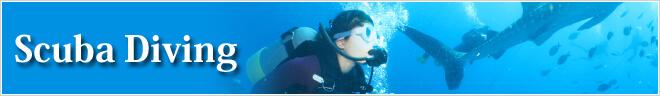 英ツアーカテゴリー Scuba Diving