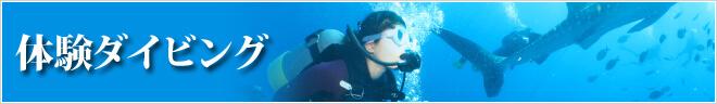 ツアーカテゴリー 体験ダイビング