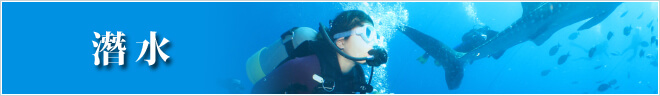 行程分類 潛水