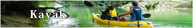 Tour category Kayak