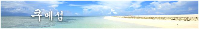 플랜 카테고리 쿠메섬
