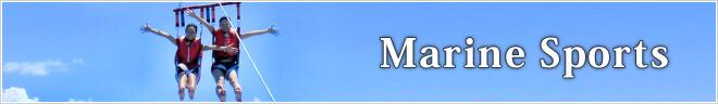 英ツアーカテゴリー Marine Sports