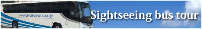 英ツアーカテゴリー Sightseeing bus tour