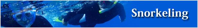 英ツアーカテゴリー Snorkeling