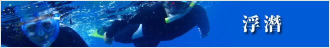 行程分類 浮潛