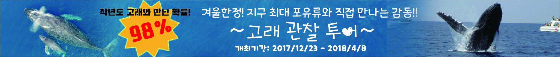 <!--:zh:-->强大的观鲸在冲绳!期间接待20167-2018오키나와에서 박력의 고래! 2017 ~ 2018 접수 중