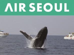 AirSeoul_Whale