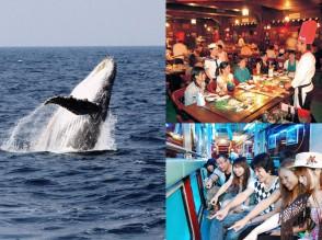 dream-whale