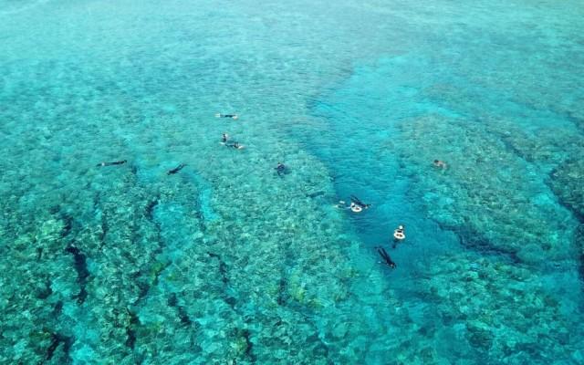 P Snorkeling (5)