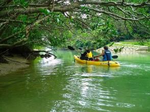 P Kayak (5)
