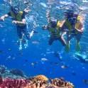 slider_snorkeling1
